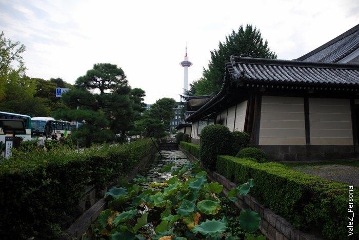 Сочетание старинных храмов и современных небоскребов - типично для всех крупных городов Японии