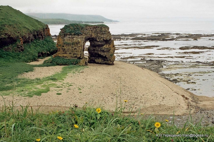Памятник природы:арка Стеллера на острове Беренга