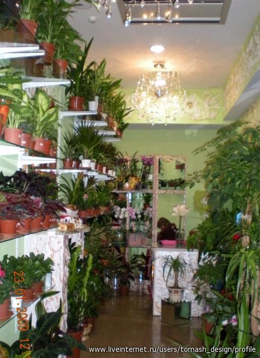 Дизайна цветочного магазина