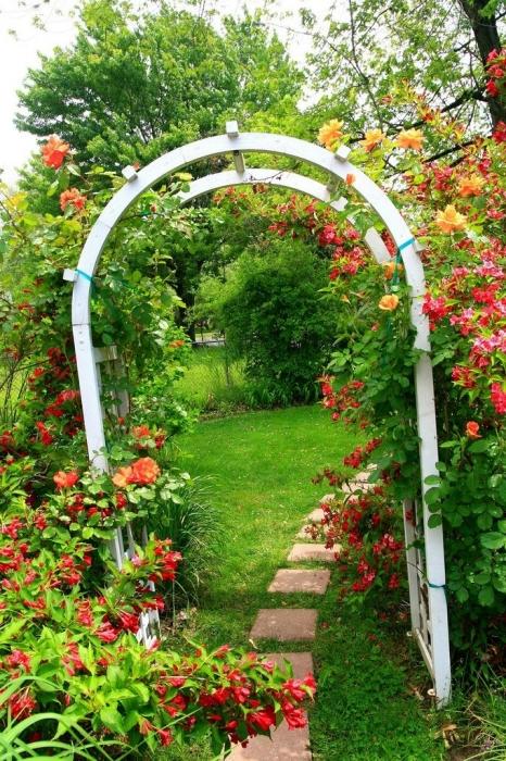 Украсить сад!  Арки, решетки, перголы