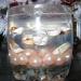 Гелевая свечка без пузырьков