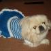 лялька в морском платье