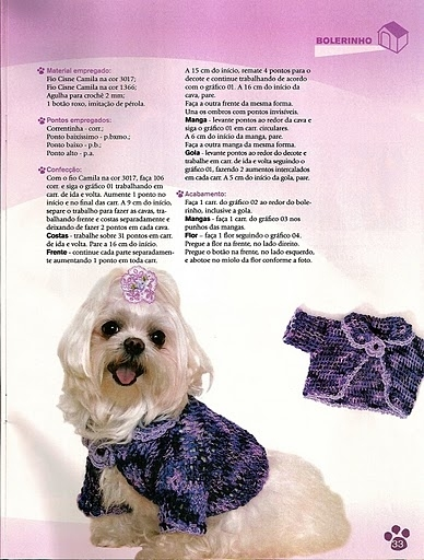 fashion for pet: sewing dog clothes