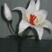 Лилия, валяние из шерсти