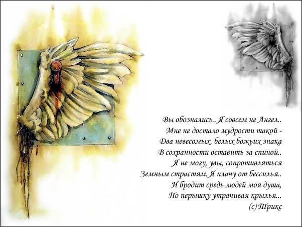 перебинтованный что означает поздравление крыльев за спиной заливало водой