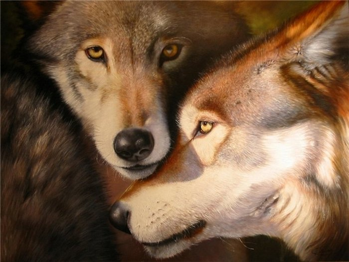 Ролевая игра про волков аватары волчица сюжетно-ролевая игра ремонт машин