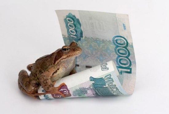 жаба душит - Самое интересное в блогах