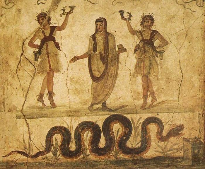 этруски познакомили римлян с