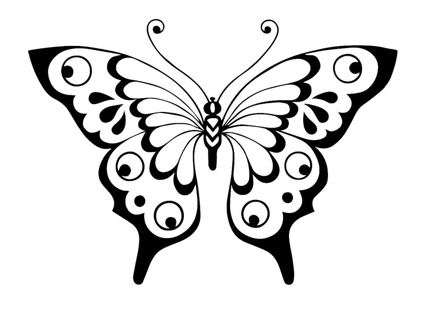 раскраска бабочки обсуждение на Liveinternet российский