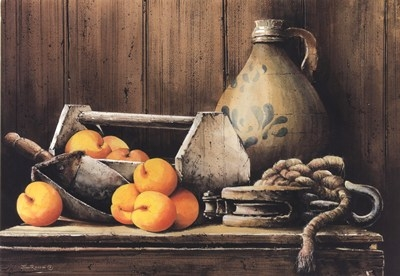 apricots-abound-by-john-rossini (400x276, 80Kb)