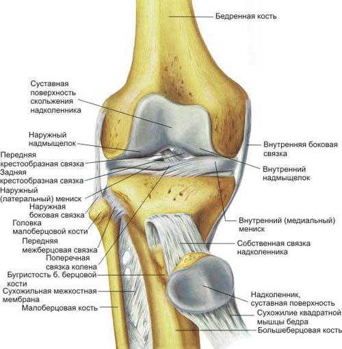 Когда колени болят что делать