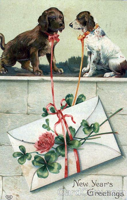 Картинки доброе, открытки с собаками ретро