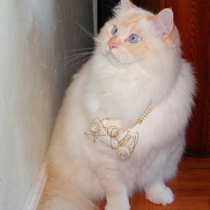 Дамские украшения из шерсти кота
