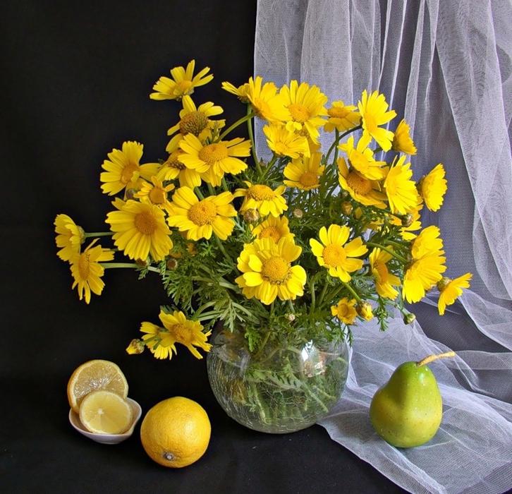 Картинки цветов с надписями добрый вечер