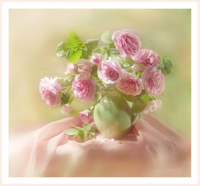 Натюрморты Розовые розы 76525783_large_2795685_0_323ac_77460d22_XL (700x651, 68Kb)
