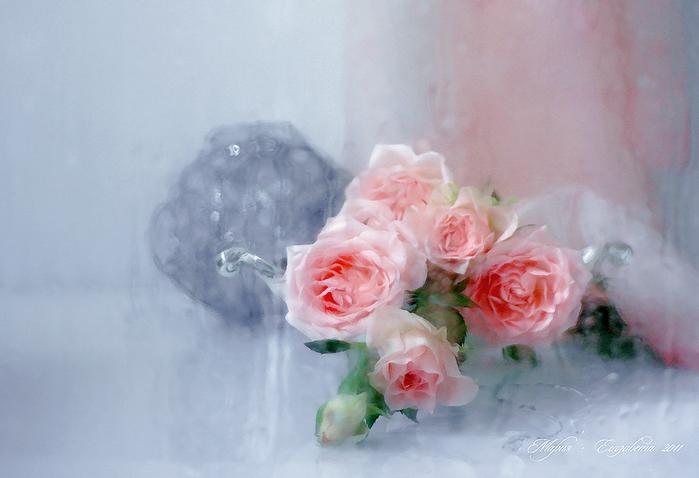 Натюрморты Розовые розы 881175 (700x478, 339Kb)