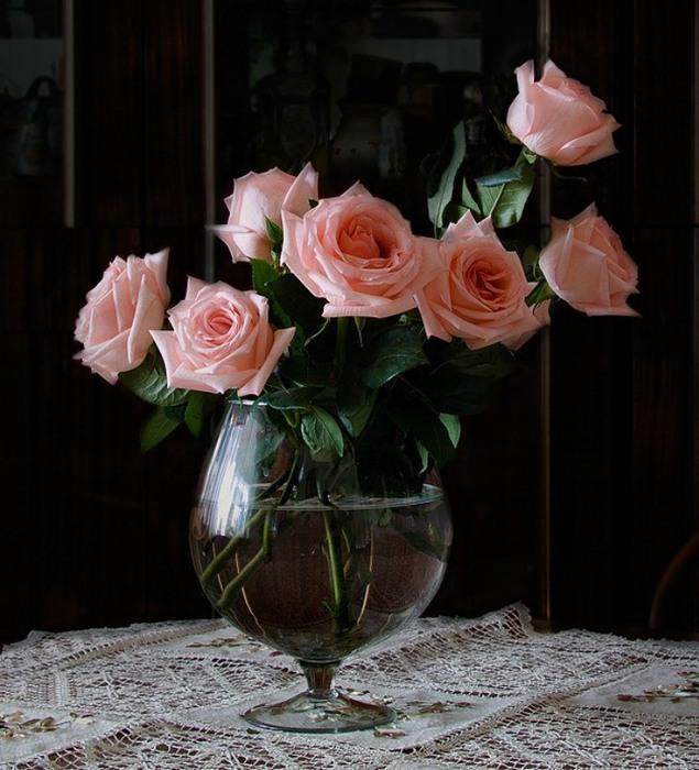 Натюрморты Розовые розы 0_8a066_49473289_XL (635x700, 112Kb)