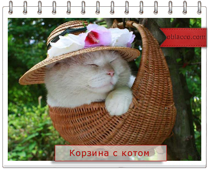 корзина плетеная из газетных трубочек/3518263_korzina (434x352, 276Kb)