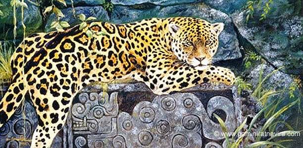 jaguar (612x300, 287Kb)