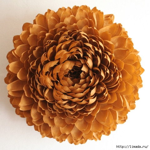 chrysanthemum-II_large (480x480, 163Kb)