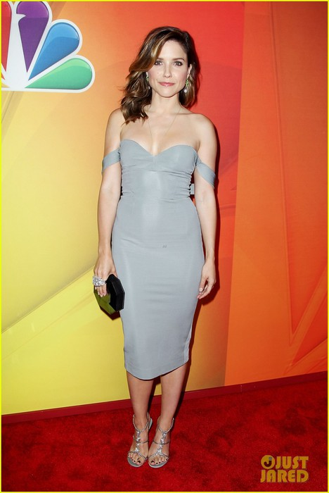 sophia-bush-blacklist-stars-promote-shows-at-nbc-upfront-01 (468x700, 61Kb)