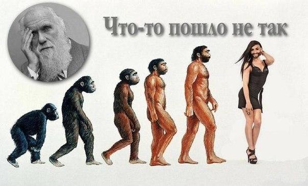 https://img0.liveinternet.ru/images/attach/b/4/113/0/113000990_evoluciya.jpg
