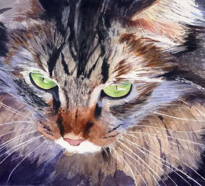 Кошачьи акварели Rachel Parkerx_fa15138a (700x633, 165Kb)