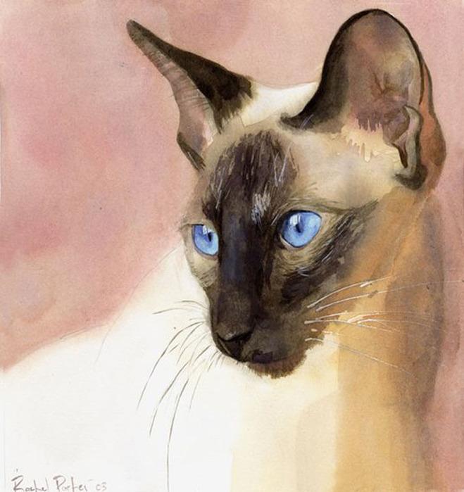 Американская художница Рэйчел Паркер1 (659x700, 112Kb)