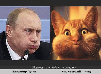 http://img0.liveinternet.ru/images/attach/c/0//43/586/43586140_1241805842_1241130031.jpg