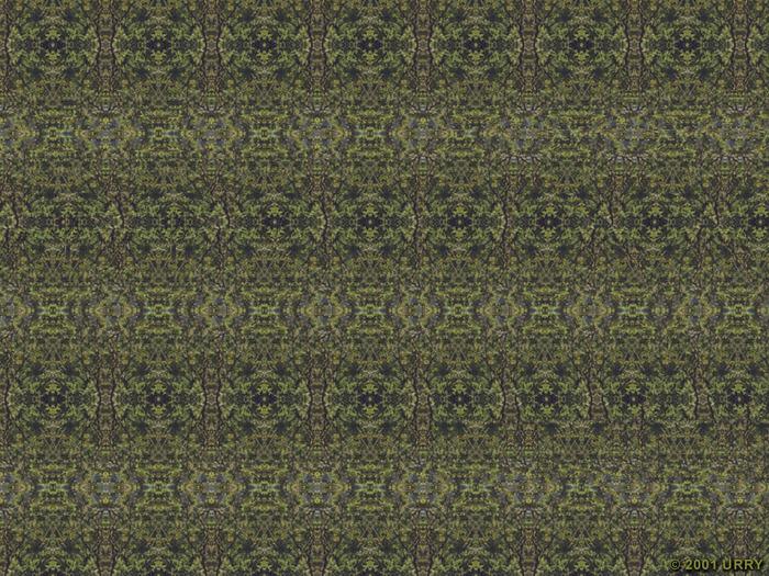 http://img0.liveinternet.ru/images/attach/c/0//44/76/44076701_vertolet_2.jpg