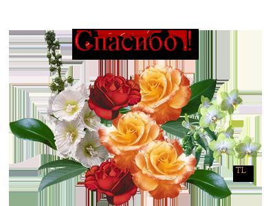 40792268_Untitled1 (400x300, 161Kb)
