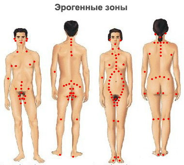 Самые сексуальные точки на теле мужчины