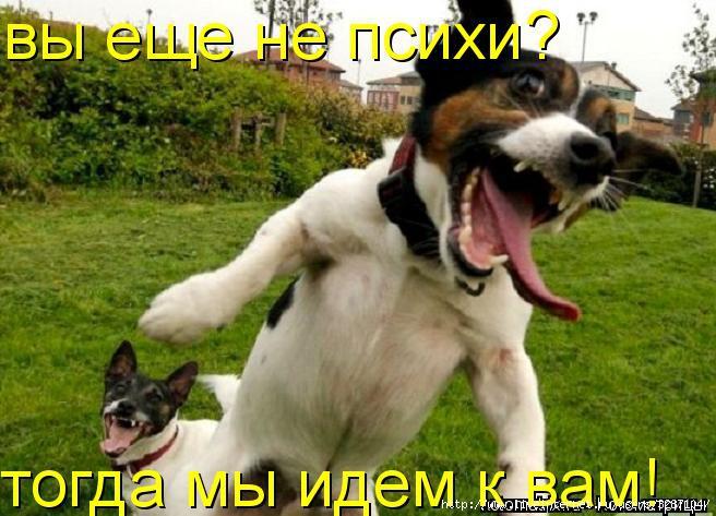http://img0.liveinternet.ru/images/attach/c/0//52/211/52211796_1260365974_.jpg