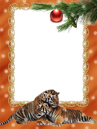 http://img0.liveinternet.ru/images/attach/c/0//52/356/52356700_1260656371_2_tigrenka_kopiya.jpg