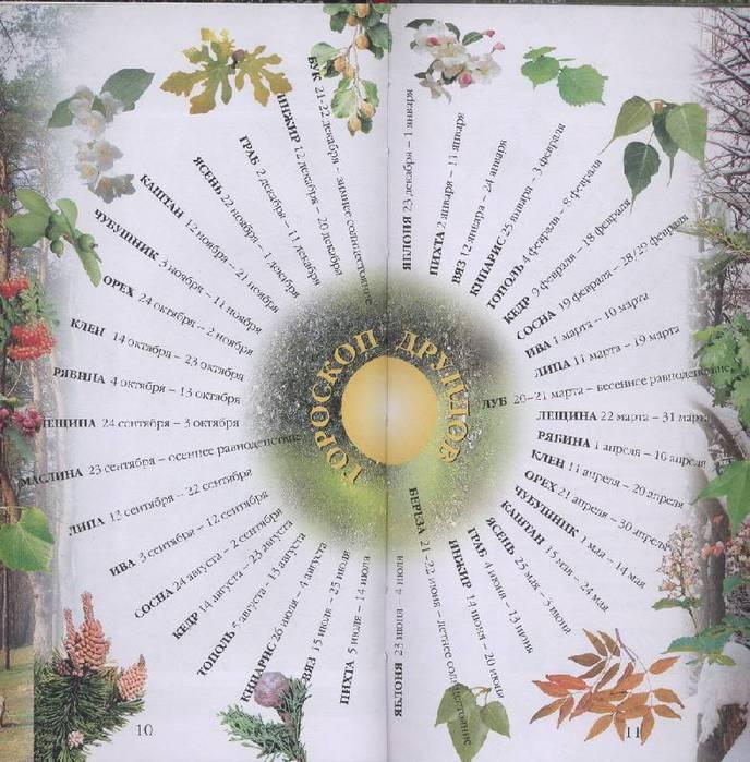 Восемнадцать древесных знаков действуют дважды в течение календарного года в зависимости от положения солнца согласно календарю друидов.