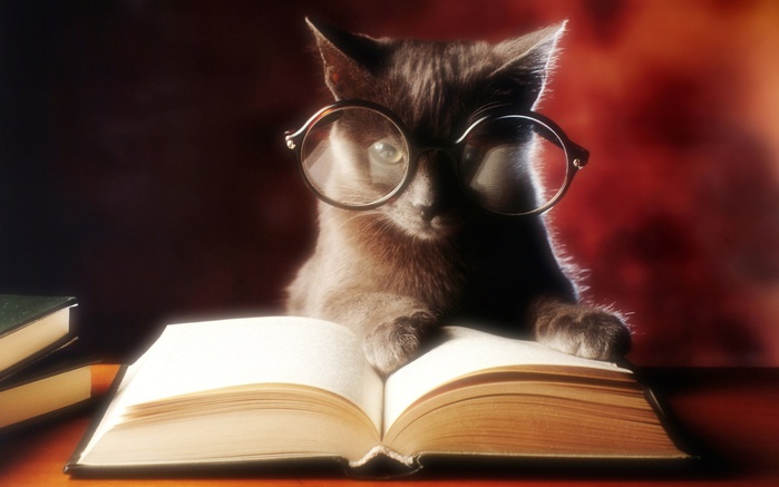 Cat-with-Reading-Glasses-and-Open-Book (700x437, 73Kb)