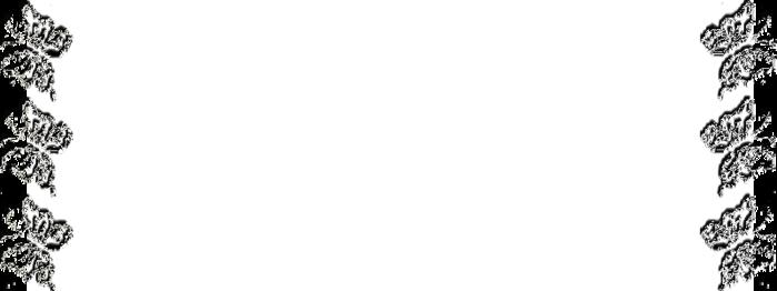 фон бабочки1 (700x262, 88Kb)