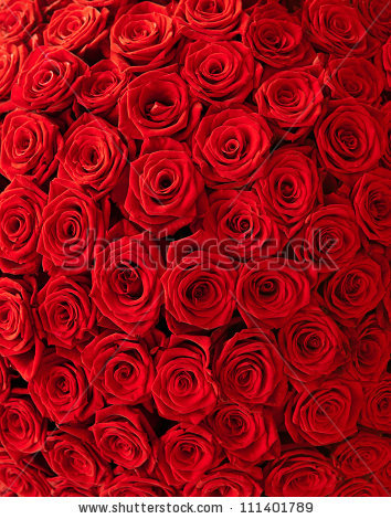 stock-photo-plenty-red-natural-roses-background-111401789 (354x470, 262Kb)