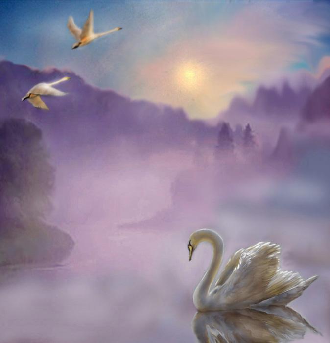 этого картинки одинокая лебедь в небе голубой цвет