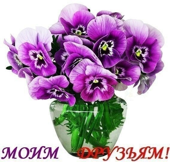 https://img0.liveinternet.ru/images/attach/c/0/121/120/121120860_HAtEpuyi0Vw.jpg