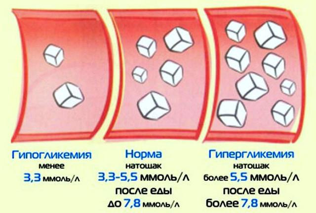Уровень сахара в крови - важный показатель здоровья человека ...