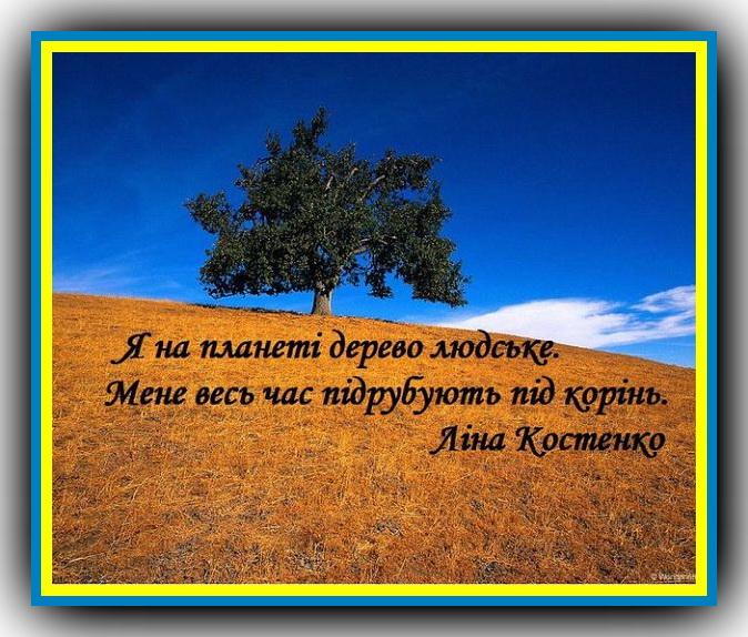 Картинки по запросу Лина Васильевна Костенко фото