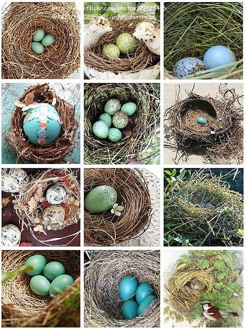 1428351711_Easter_ideas_172 (479x640, 224Kb)