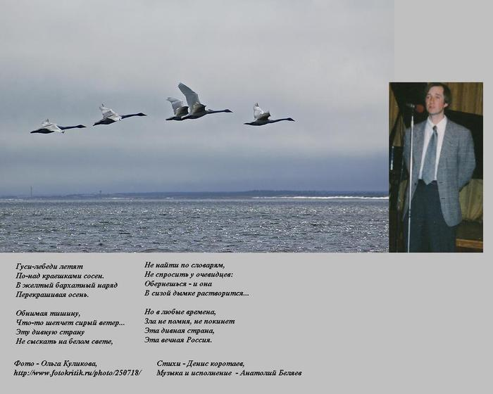http://img0.liveinternet.ru/images/attach/c/0/31/49/31049473_Lebedi_letyat_12.JPG