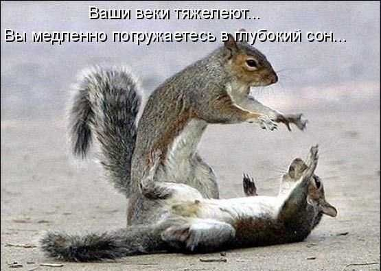 http://img0.liveinternet.ru/images/attach/c/0/34/482/34482729_1225355377_img_18190871_209_0.jpg