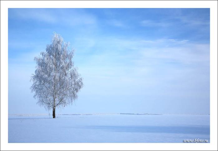 http://img0.liveinternet.ru/images/attach/c/0/36/501/36501217_bfoto_ru_209.jpg