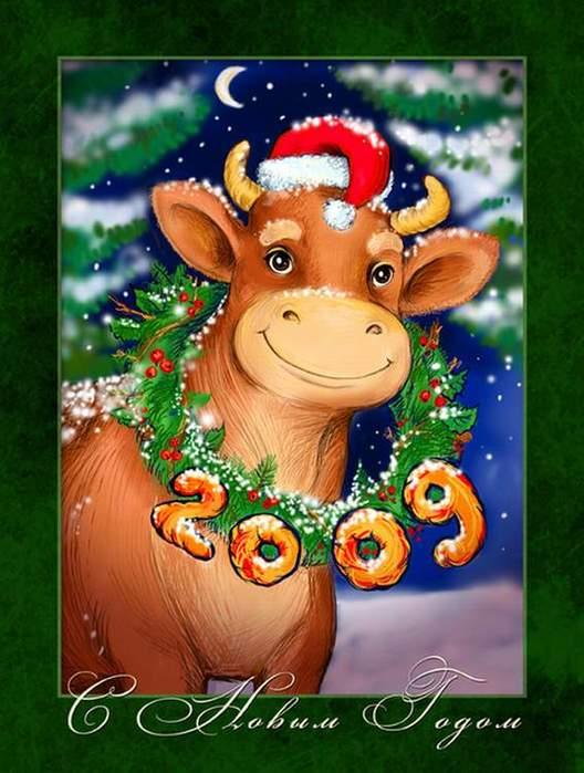 Картинки, открытка год быка