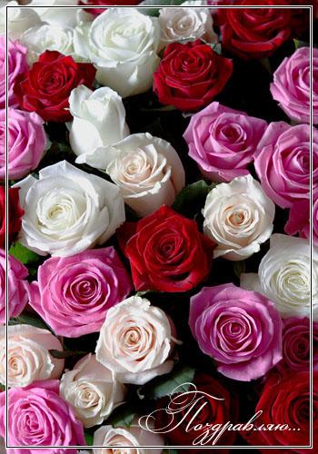 http://img0.liveinternet.ru/images/attach/c/0/39/58/39058357_d77624d6bb2a.jpg