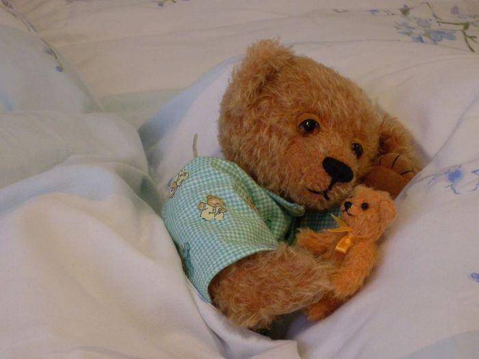 правило, фото сказочного спящего медвежонка ортопедическим основанием