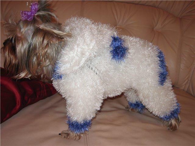 вязание одежды для собак спицами схемы
